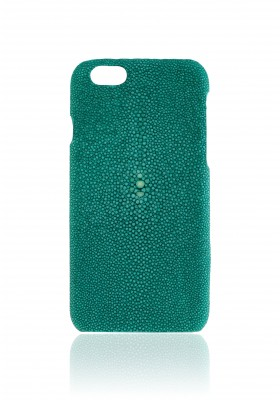 Case Stingray Emerald Green